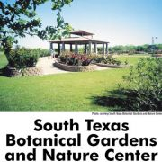 39 Free And Cheap Things To Do In Corpus Christi Tx Tripbuzz